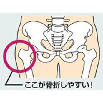 婦人介護肌着 転ばぬ先のあんしんガードル 転倒時の衝撃吸収