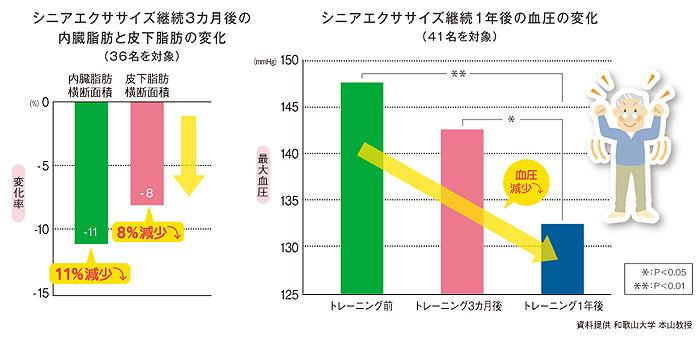 エクササイズステップ 本体みのDVDなし 昇降運動の説明
